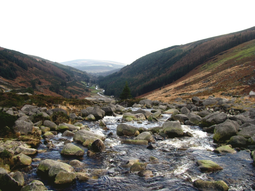 Wicklow Mountain II