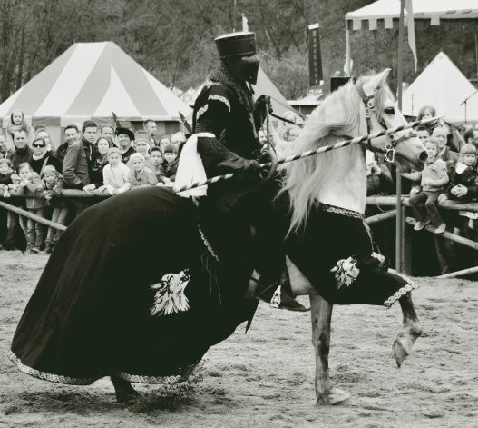 knight bw II