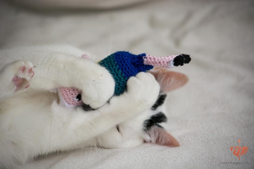 Amigurimi-Katzenspielzeug-Cute-Cat-Mohntage