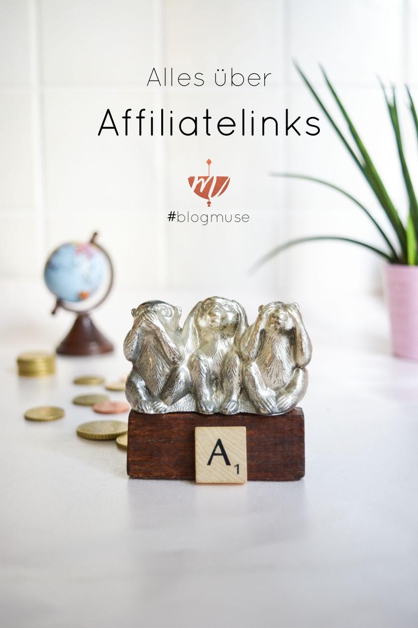 mit-affiliate-links-geld-verdienen-mohntage-pinterest