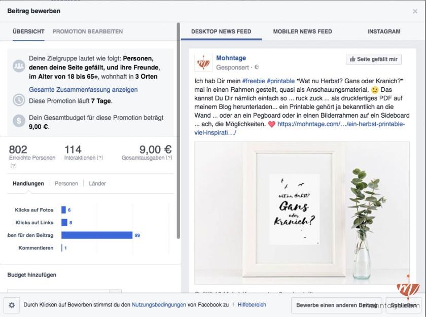 facebook-ads-die-fuenf-schlimmsten-fehler-und-wie-du-sie-vermeidest-blogmuse-screenshot