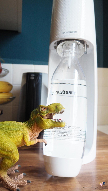 SodaStream-Spirit-Gewinnspiel-Fizzy-Ingwer-Drink-hansguenther-Mohntage-Blog31103121.jSodaStream-Spirit-Gewinnspiel-Fizzy-Ingwer-Drink-hansguenther-Mohntage-Blogg