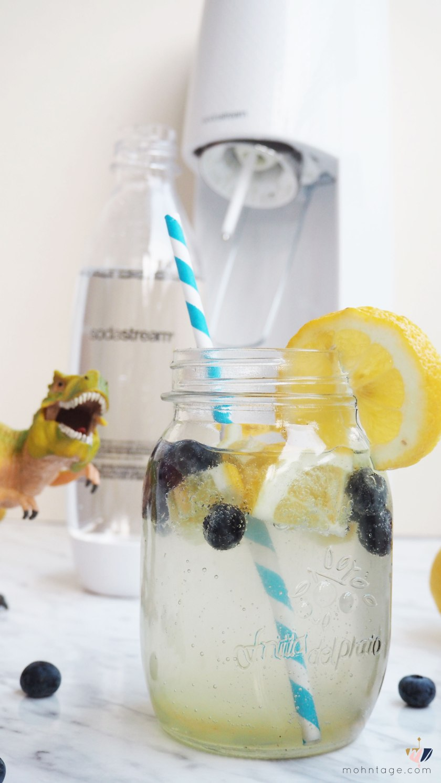 SodaStream-Spirit-Gewinnspiel-Fizzy-Ingwer-Drink-hansguenther-Mohntage-Blog31103561.jSodaStream-Spirit-Gewinnspiel-Fizzy-Ingwer-Drink-hansguenther-Mohntage-Blogg